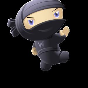 cropped-ninja-kick.png