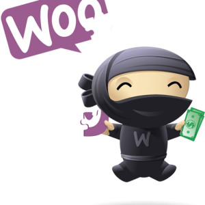 Woo Extension - Category Discount Woocommerce